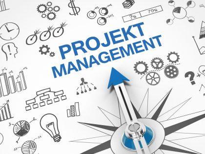 Projektmanagement – »Ungeeignetes Staffing, unklare Projektziele«